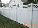 Haut Jardin de piquetage clôture PVC (DY002)