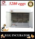 Certification CE Meilleur Prix d'oeufs de canard incubateur numérique pour la vente (KP-25)