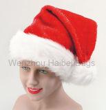 De Hoed van Kerstmis (hbhc-003)