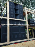 Serie van de Lijn Vt4880 Dubbele 18inch Grote Subwoofer van Haoyang de Audio
