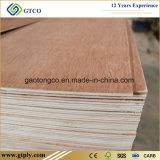madera contrachapada de Bintangor Commerical del rojo de 5.2m m para Medio Oriente