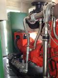 5*120kw + de Elektrische centrale van het Biogas 2*50kw