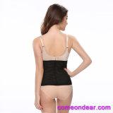Muestra gratis de alta calidad de etiqueta privada de las mujeres adelgaza cintura formador