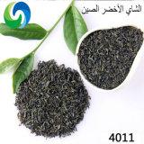 Commerce de gros 4011 haute montagne de thé chinois de feuilles de thé vert Bio