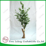 244pcs quitte l'usine d'Eucalyptus tressé artificielle de l'argent, de la chance de l'arbre d'arbre