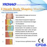 Professional Cryolipolysis Slimming Body Sculpting le matériel de poids Pertes de la machine