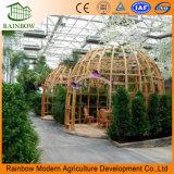 温室の生態学的なレストランのポリカーボネートシートの屋根のガラス壁の温室