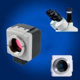 10MP HD USB Microscopio digital la cámara, el ocular electrónico