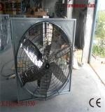 As aves domésticas abrigam ventiladores de suspensão da vaca