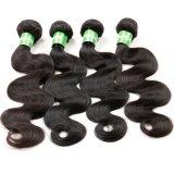 Pacotes brasileiros do Weave do cabelo humano do vison da onda do corpo do cabelo do Virgin