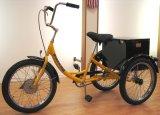 """20 """"大人3の車輪のバイク、SHT002貨物Trike"""