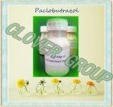 Guter Preis für Paclobutrazol, Regulator für das Wachstum von Flüssigkeitenanlagen (95 % TC, 10 % WP, 15 % WP, 25 % SC)