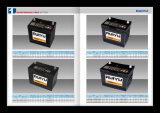 12 V 95Ah MF Autobatterien
