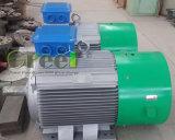 générateur hydraulique de 10kw 100rpm avec la tension CA De 3 phases 50Hz