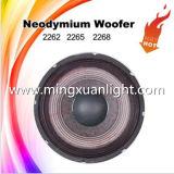 2265HPL Haut-parleur de haut-parleur DJ de haut-parleur de 15 po Haut-parleur de wagons de néodyme