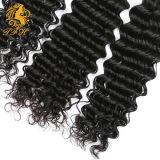 выдвижения человеческих волос девственницы 7A соткать волос бразильского бразильский (TFH-182)
