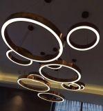 강철 라운드 LED 펀던트 램프 (WHG-8233)