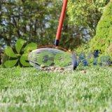 Свертывать выбирает вверх инструмент для ручного резца сада жолудей