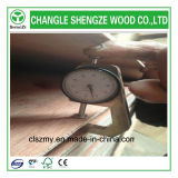 18mm Commercial Plywood Used para Furniture
