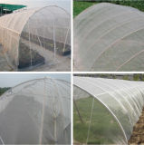 House verde Plastic Film 200 Micron Plastic Film para Green House
