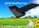 Поднос питомника семени завода сада оптовой продажи 54X28cm PS образца высокой ранга промотирования свободно пластичный