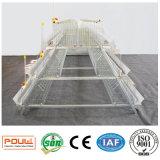 Cages de poulet de bétail de volaille de la Chine pour la poule de couche