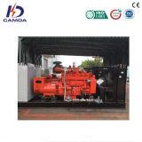генераторы Biogas 300kw раскрывают тип