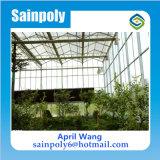 Easilly ha installato la serra di vetro per le piante