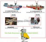Les profils de PVC WPC extrudeuse