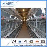 A camada do sistema de gaiolas gaiolas de bateria do compartimento de frango