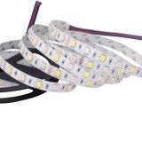 12V 60 5050RGBW LED RGB+TIRA tira de LED blanco cálido