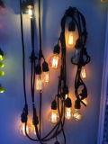Стеклянные света веревочки украшения праздника рождества корабля с шнуром патио освещают E26 (E26.12. T1)
