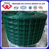 PVCによって塗られる溶接された金網のパネル(TYB-0047)