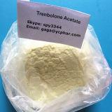 Hoher Reinheitsgrad-Steroid Puder Trenbolone Hexahydrobenzyl Karbonat