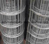 Сваренная нержавеющей сталью загородка ячеистой сети (изготовление)
