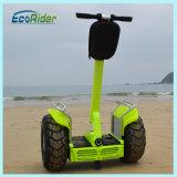 Bicicletta elettrica della doppia della batteria due di Ecorider della rotella di motore elettrico del motorino bici elettrica del E-Motorino