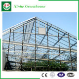 Agriculture/serres chaudes en verre commerciales de jardin pour des fleurs