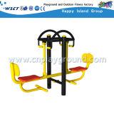 Alta calidad Equipamiento exterior Gimnasio Doble Balanceo del asiento (M11-03716)