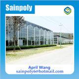 Easilly установлены стеклянные конструкции теплиц для растений
