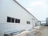 Struttura d'acciaio prefabbricata galvanizzata di trattamento per il workshop (KXD-SSW170)