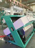 Heißer Verkaufs-Erdnuss-Farben-Sorter, Sortierer hergestellt in China