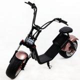 Ecorider grosse Räder Citycoco des Energien-Elektromotor-Roller-zwei elektrischer Roller
