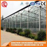 Casa verde de vidro da multi extensão industrial