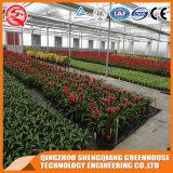 Дом полиэтиленовой пленки огорода Multi-Пяди Китая зеленая