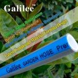 Boyau de jardin spécialisé de bonne qualité de PVC pour tous temps