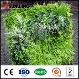 Sunwing bon marché vertical pour mur vert Bureau Décoration