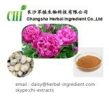 고품질 Paeonia Lactiflora Pall 추출 분말, 백색 작약 루트 P.E. Paeoniflorin