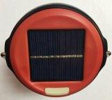 Niedrige Kosten-mini bewegliche Solarbeleuchtung mit Fabrik-privater Form