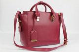 De nieuwe Trendy Ontwerpen van de Handtas van het Bureau voor de Inzamelingen van Vrouwen van Toebehoren