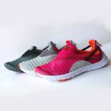 Zapatos ocasionales del nuevo del diseño deporte del precio al por mayor